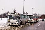 Jelcz M11