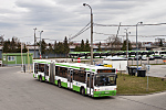 МАЗ 105065