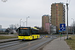 MAN NL263 Lion`s City