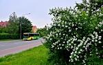 Iveco Crossway 10.8 LE